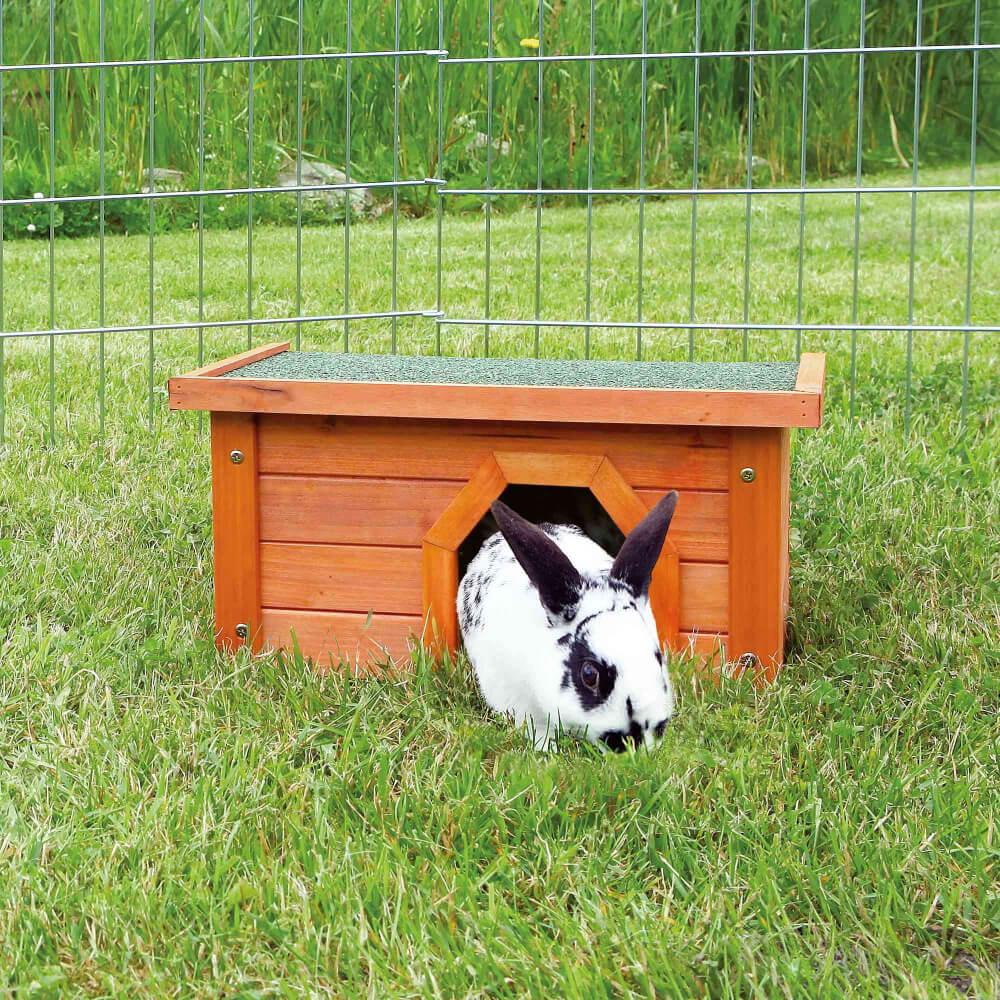 Sediakan Box Untuk Melahirkan Saat Kelinci Hamil