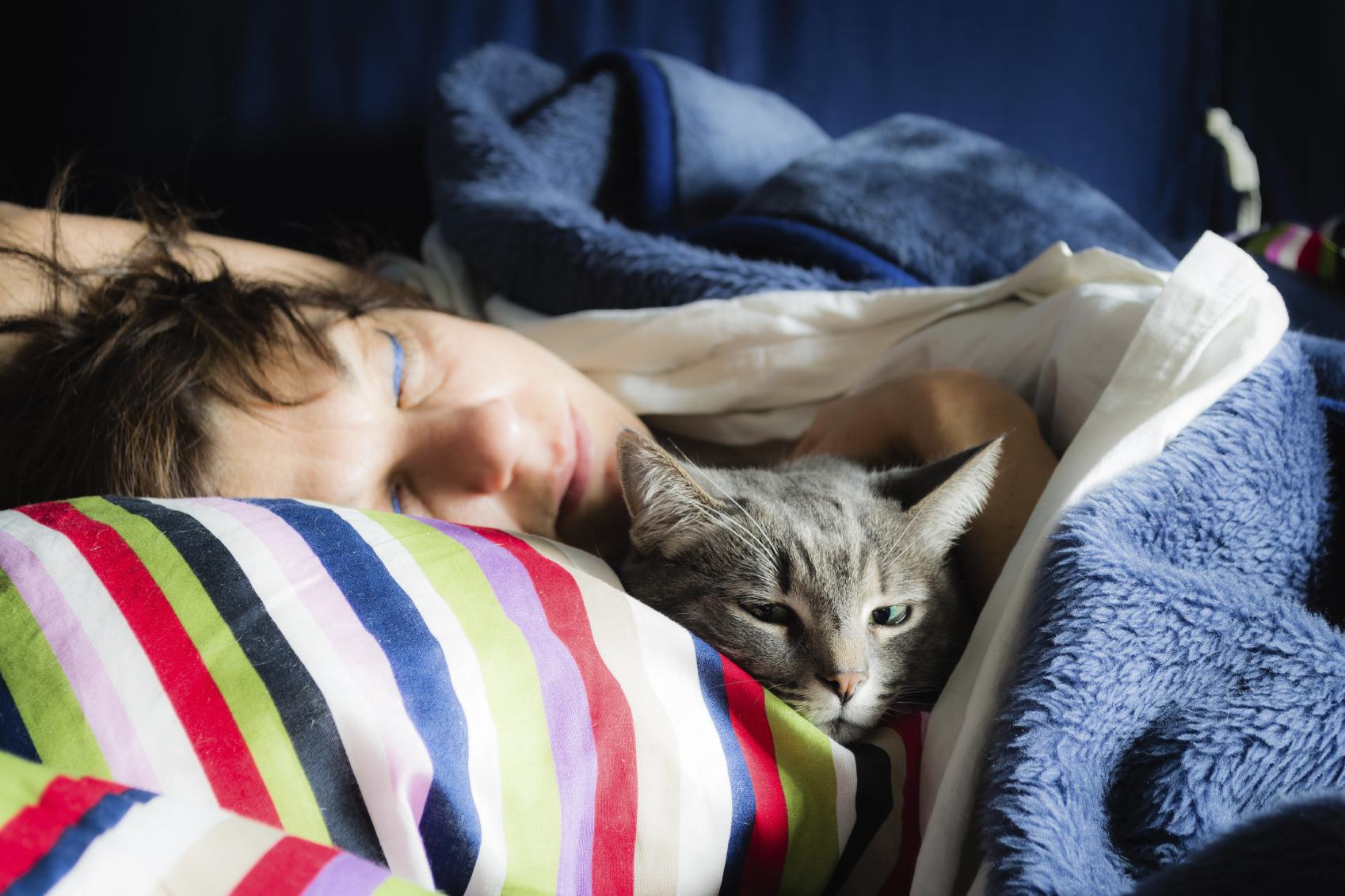 cara menggemukan anak kucing kampung: Ajak si Kucing Tidur dan Selalu Elus Kepalanya
