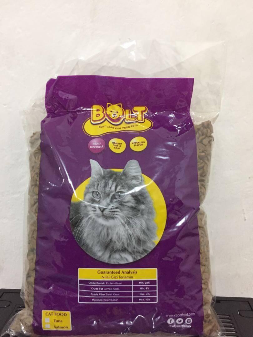 jenis makanan kucing anggora
